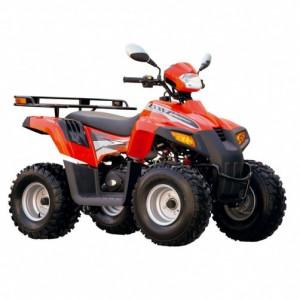 Запчасти ATV 110 D (603)