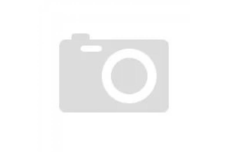 9161-04-010 | LU013833 Винт самонарезающий с крестообразн.шлицем 4.0x10мм, сталь (B05074001005)